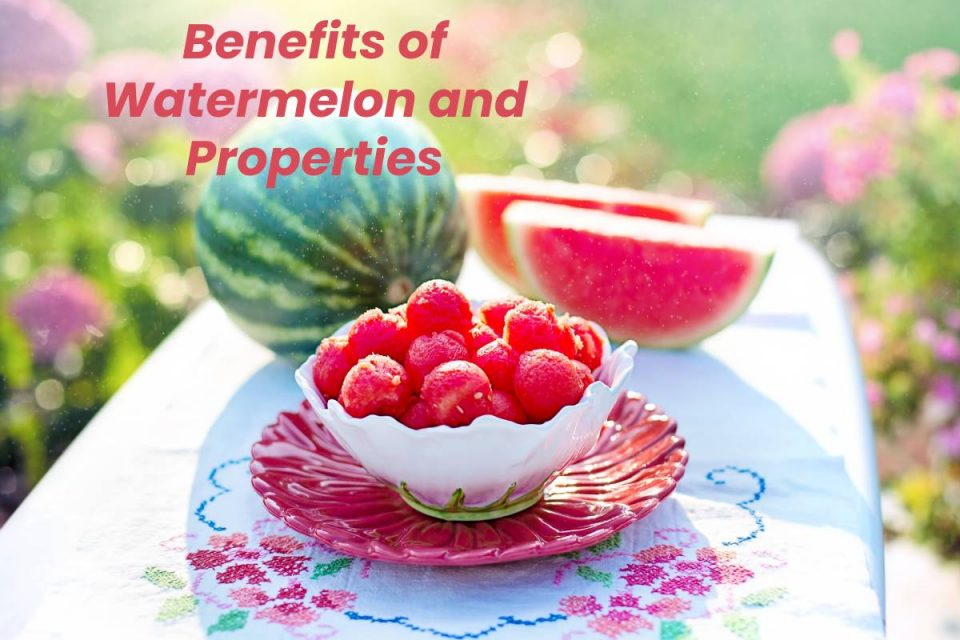 Benefits of Watermelon and Properties
