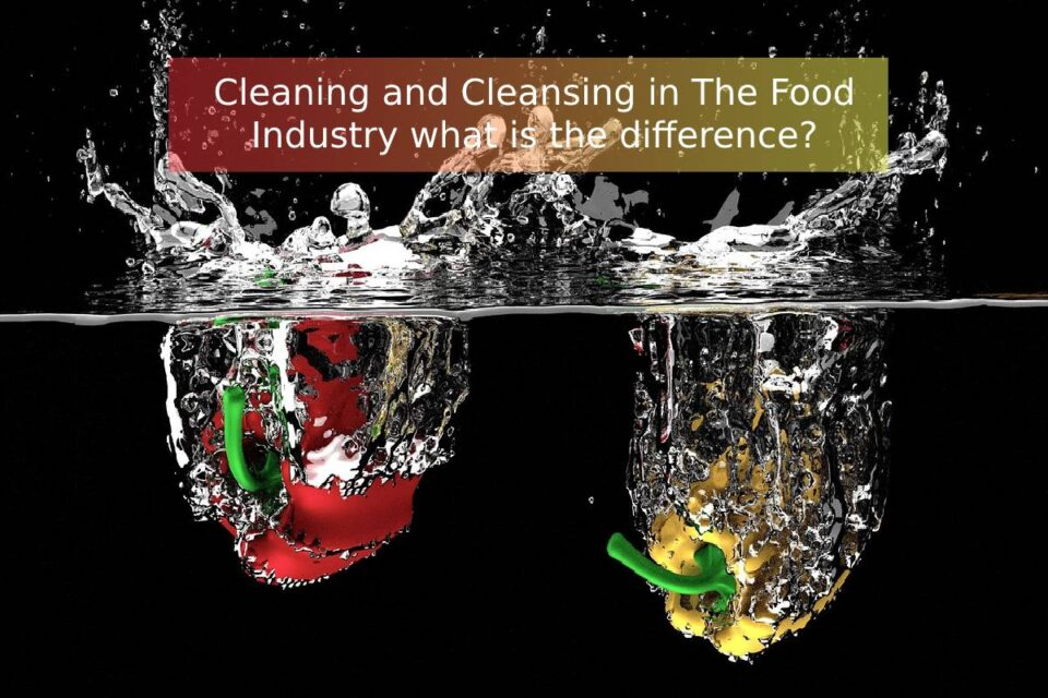 Cleaning and Cleansing in The Food Industry what is the difference?