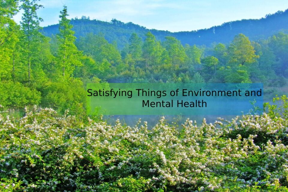 Satisfying Things of Environment and Mental Health