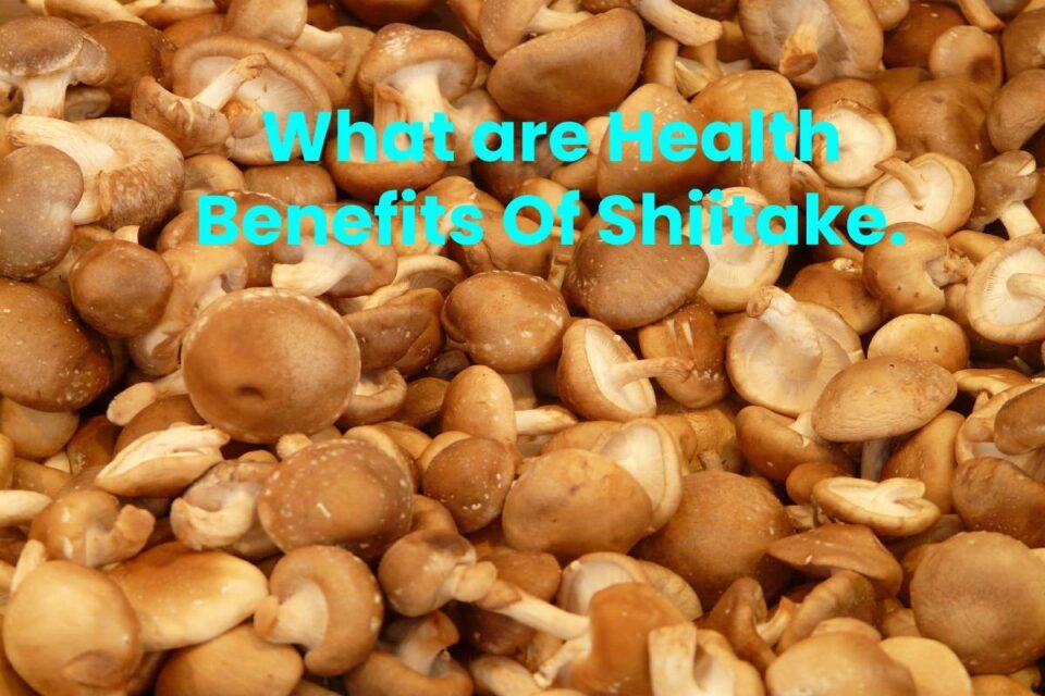 What are Health Benefits Of Shiitake.